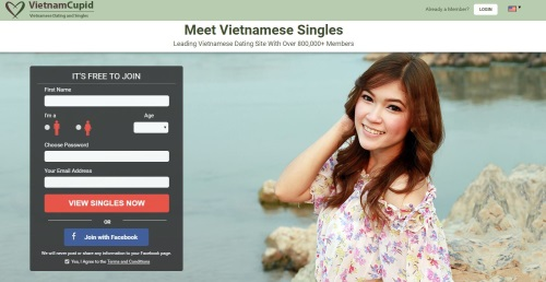 vietnamcupid homepage